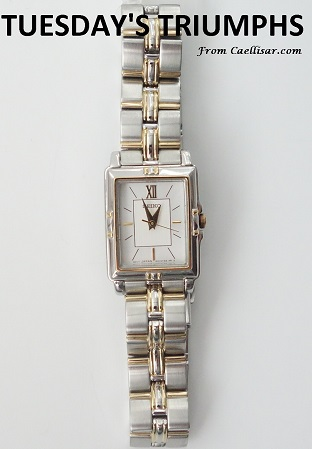 tt ladies two tone rectangular seiko watch